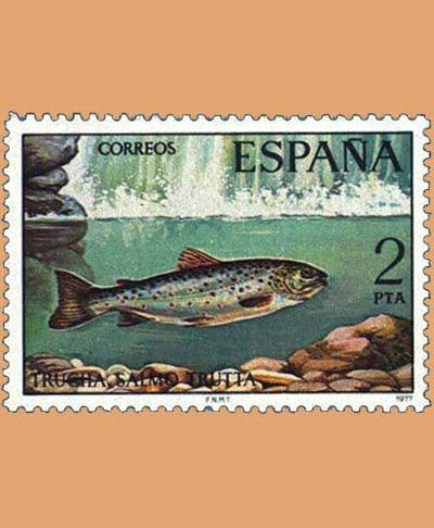 Edifil 2404. Fauna. Trucha. Sello 2 pts. **1977