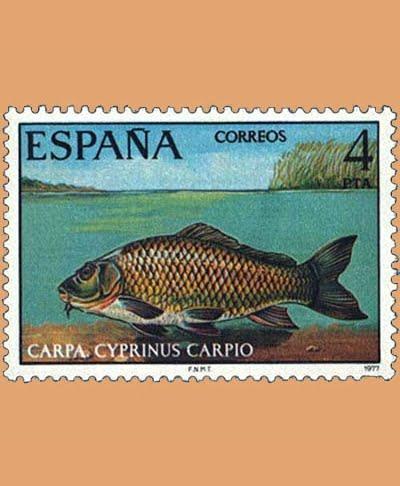 Edifil 2406. Fauna. Carpa. Sello 4 pts. **1977